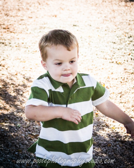 Barsness-0015-family_session__family_photography__Glendale_family_photographer