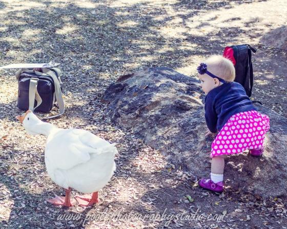 Barsness-0023-family_session__family_photography__Glendale_family_photographer
